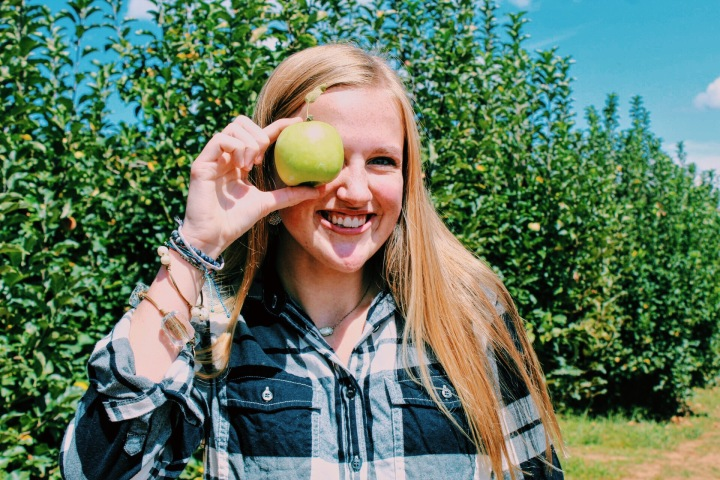 Apple Picking inPlaid