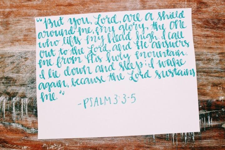 Scripture Sunday Vol.13