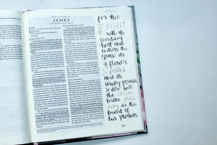Scripture Sunday Vol.33